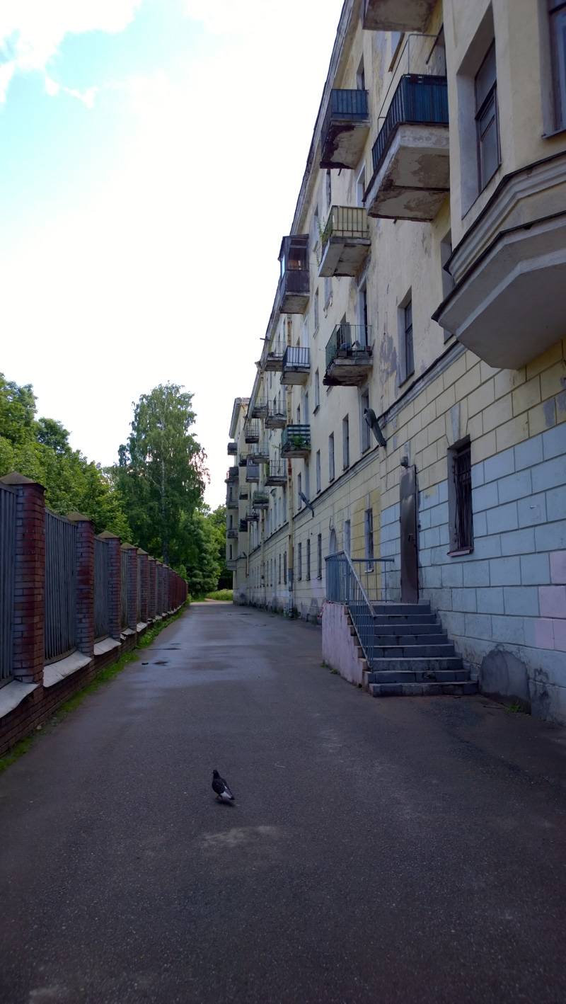 https://www.kinonews.ru/insimgs/2015/persimg/persimg53905_24.jpg