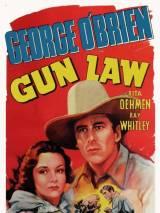 Оружейный закон / Gun Law