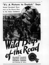 Дикие парни с дороги / Wild Boys of the Road