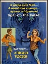 Прогулка с тиграми / A Tiger Walks