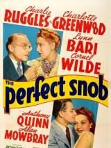 Великолепный сноб / The Perfect Snob