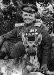 Белый клык - герой Великой Отечественной войны