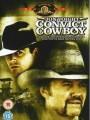 Ковбой под арестом / Convict Cowboy