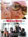 Американский примитив / Wild About Harry
