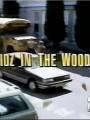 Детишки в лесу / Kidz in the Wood