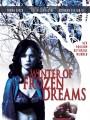Зима замерзших надежд / Winter of Frozen Dreams