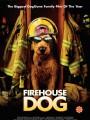 Пожарный пес / Firehouse Dog