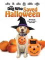 Собака которая спасла Хэллоуин / The Dog Who Saved Halloween