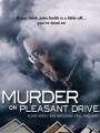 Убийство на Приятной улице / Murder on Pleasant Drive