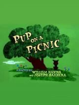 Пикник / Pup on a Picnic