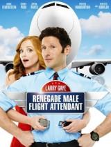 Суперстюард / Larry Gaye: Renegade Male Flight Attendant