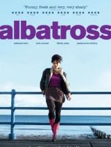 Альбатрос / Albatross