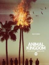 По волчьим законам / Animal Kingdom