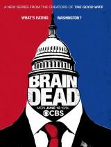 Безмозглые / BrainDead