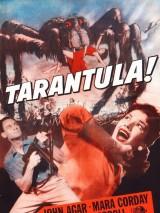 Тарантул / Tarantula