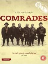 Товарищи / Comrades