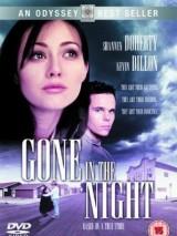 Пропавшая в ночи / Gone in the Night