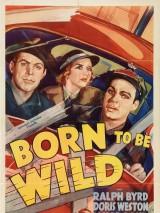 Рожденный жить на воле / Born to Be Wild