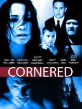 Загнанный в угол / Cornered