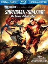 Витрина DC: Супермен/Шазам! - Возвращение черного Адама / DC Showcase: Superman/Shazam!: The Return of Black Adam