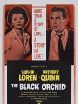 Черная орхидея / The Black Orchid