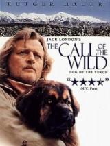 Зов предков / The Call of the Wild: Dog of the Yukon