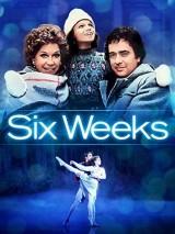 Шесть недель / Six Weeks