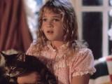 Кадры к подборке фильмов Какие лучшие фильмы про котов и кошек стоит посмотреть?