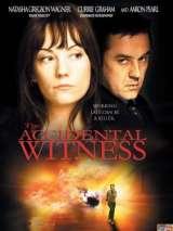 Случайный свидетель / The Accidental Witness
