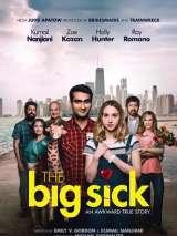 Любовь - болезнь / The Big Sick