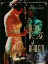 Пулеметный блюз / Black Rose of Harlem