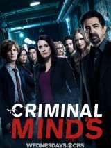 Мыслить как преступник / Criminal Minds
