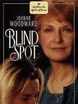 Слабое место / Blind Spot