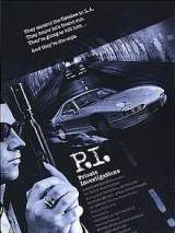 Частные расследования / P.I. Private Investigations