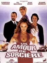 Колдовская любовь / Un amour de sorcière