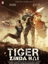 Тигр жив / Tiger Zinda Hai