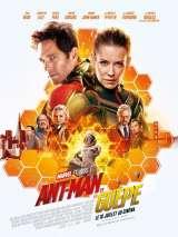 Человек-муравей и Оса / Ant-Man and the Wasp