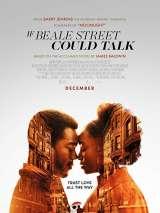 Если Бил-стрит могла бы заговорить / If Beale Street Could Talk