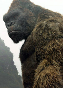 Warner Bros. готовится к переносу премьеры Годзиллы против Кинг Конга