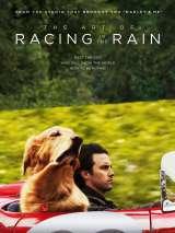 Невероятный мир глазами Энцо / The Art of Racing in the Rain