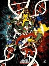 Юная Лига Справедливости / Young Justice
