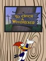 Поймайте дятла / To Catch a Woodpecker