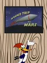 Полет на Марс / Round Trip to Mars