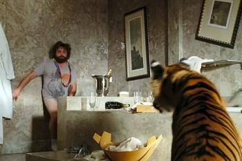 Тигр Майка Тайсона искалечил женщину