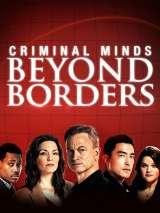 Мыслить как преступник: За границей / Criminal Minds: Beyond Borders