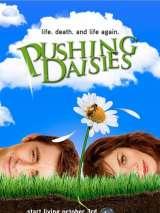 Мертвые до востребования / Pushing Daisies