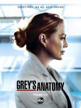 Анатомия страсти / Grey`s Anatomy