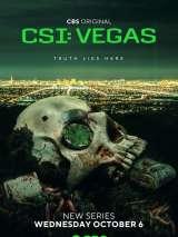 CSI: Вегас / CSI: Vegas