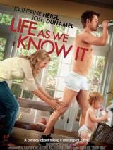 """Постер к фильму """"Жизнь, как она есть"""""""