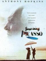 """Постер к фильму """"Прожить жизнь с Пикассо"""""""